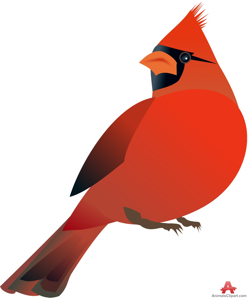Cardinal clipart vector. Red bird clip art