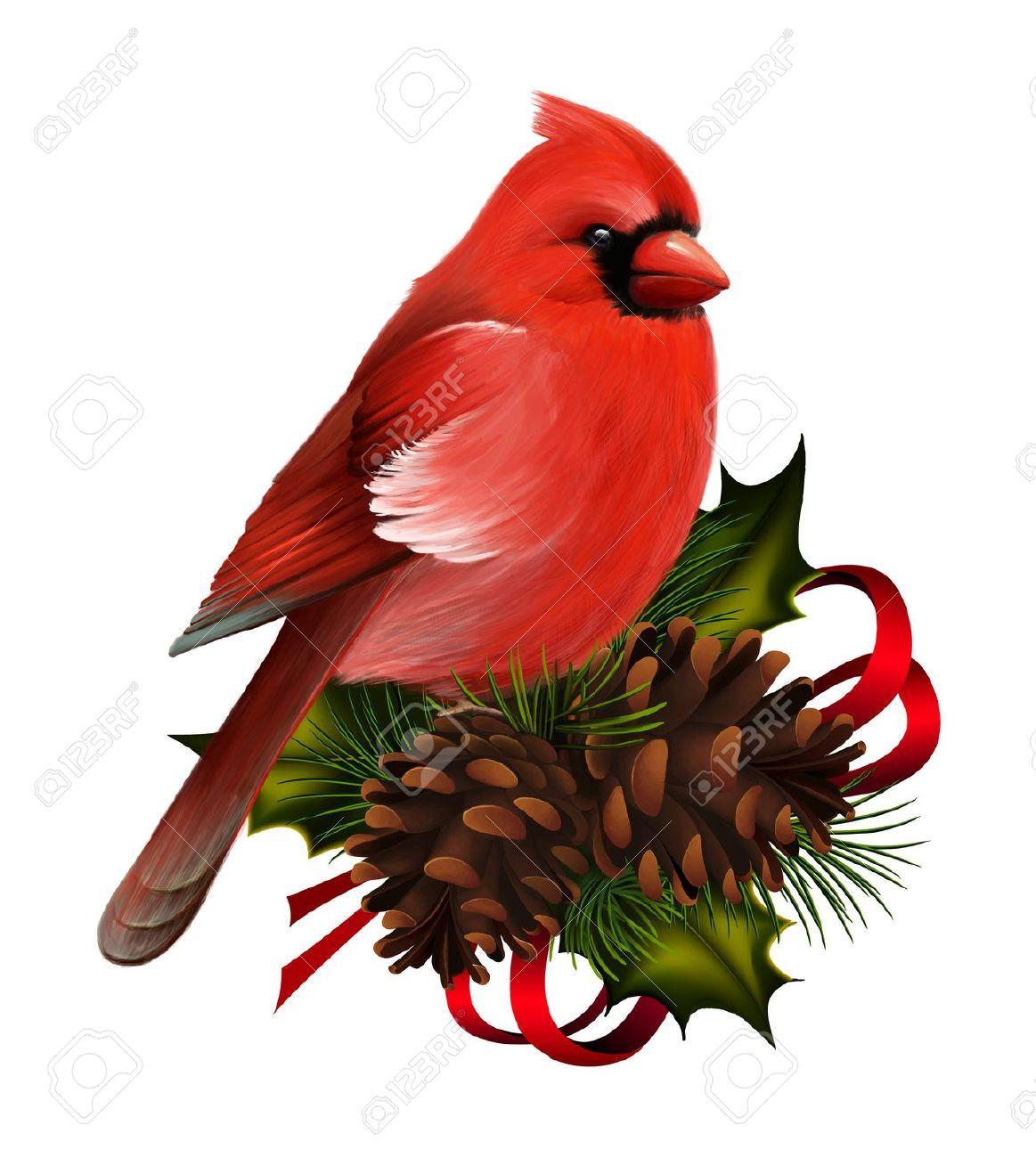 Vintage Cardinal Christmas Clipart