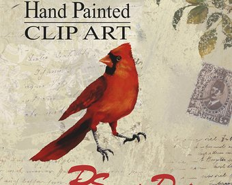 Etsy bird hand painted. Cardinal clipart vintage