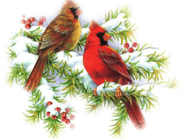 Free on dumielauxepices net. Cardinal clipart vintage