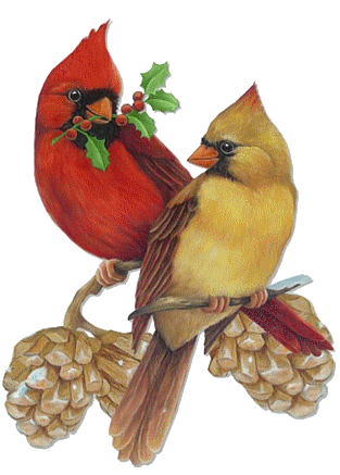 Cardinal clipart vintage. Christmas male and female