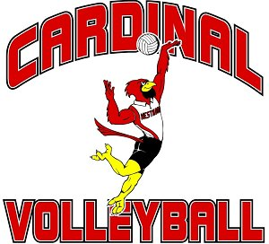 Cardinal Volleyball Clipart