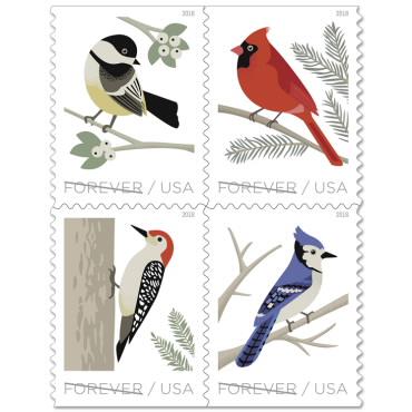 Cardinal clipart woodland bird. Birds in winter book
