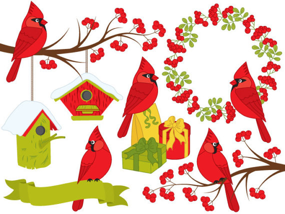 Digital vector xmas christmas. Cardinal clipart woodland bird