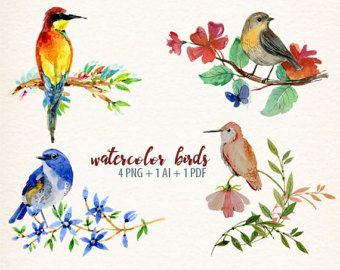 Watercolor birds winter animals. Cardinal clipart woodland bird