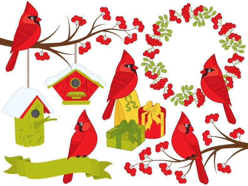 Cardinal clipart woodland bird. Digital vector xmas christmas