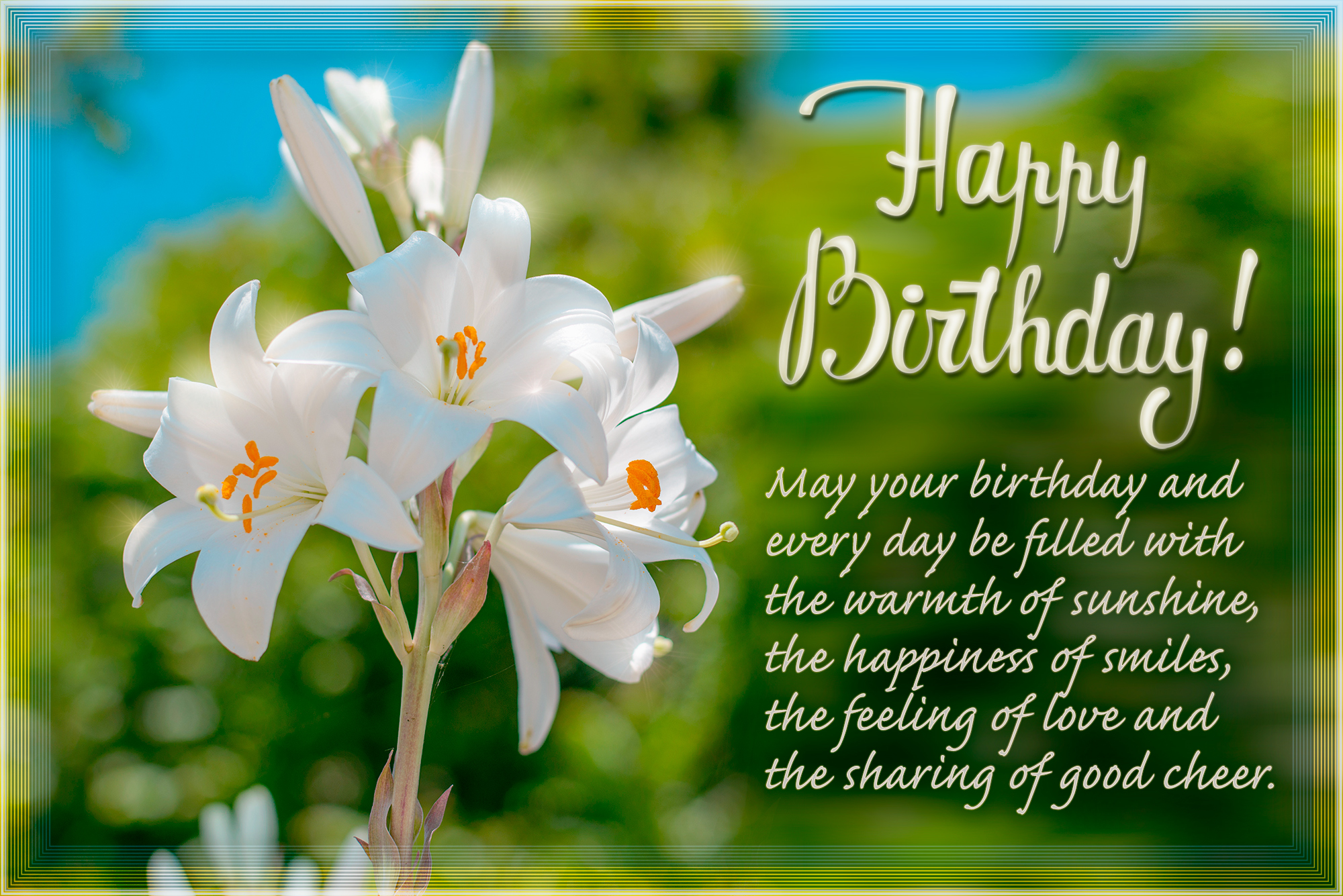 Happy birthday card with. Cards clipart flower