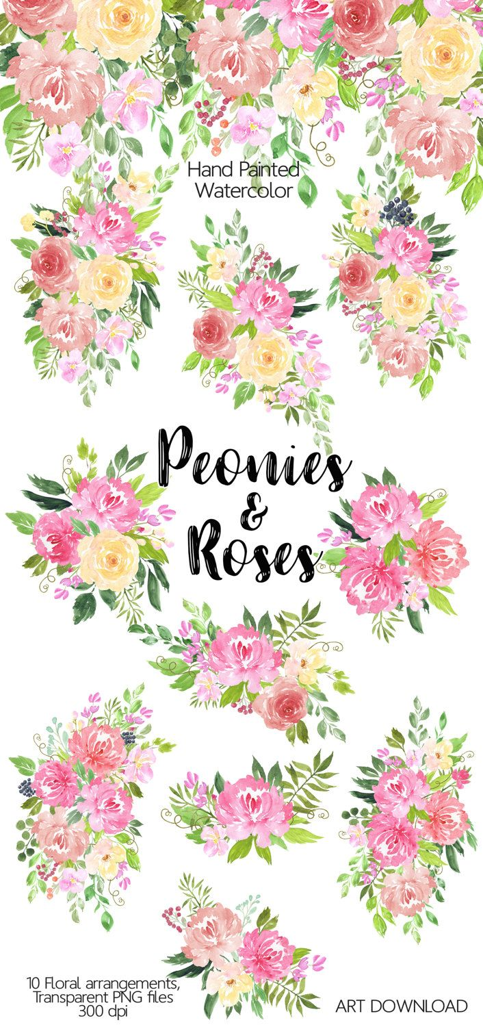 Cards clipart flower. Watercolor peonies and roses
