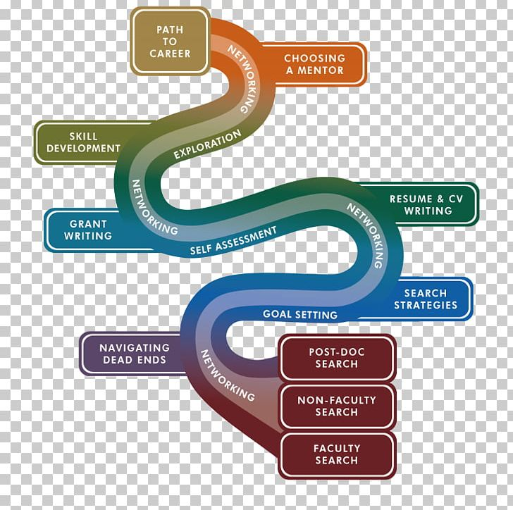 Development counseling png . Career clipart career management