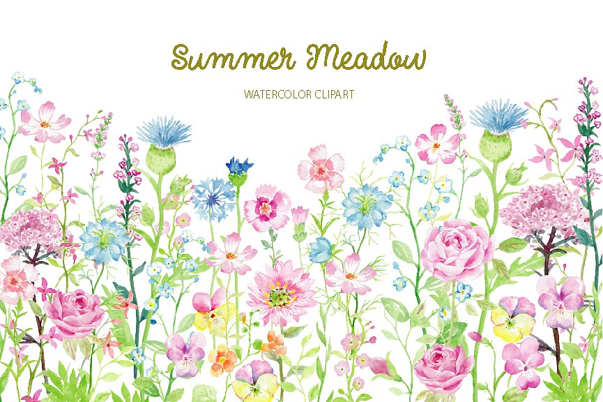 Watercolor summer meadow illustrations. Careers clipart borders
