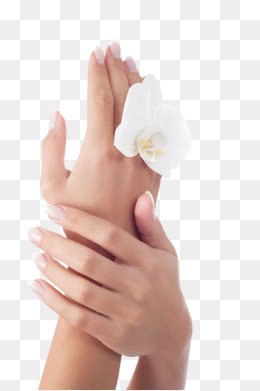 Hands care png images. Caring clipart nail