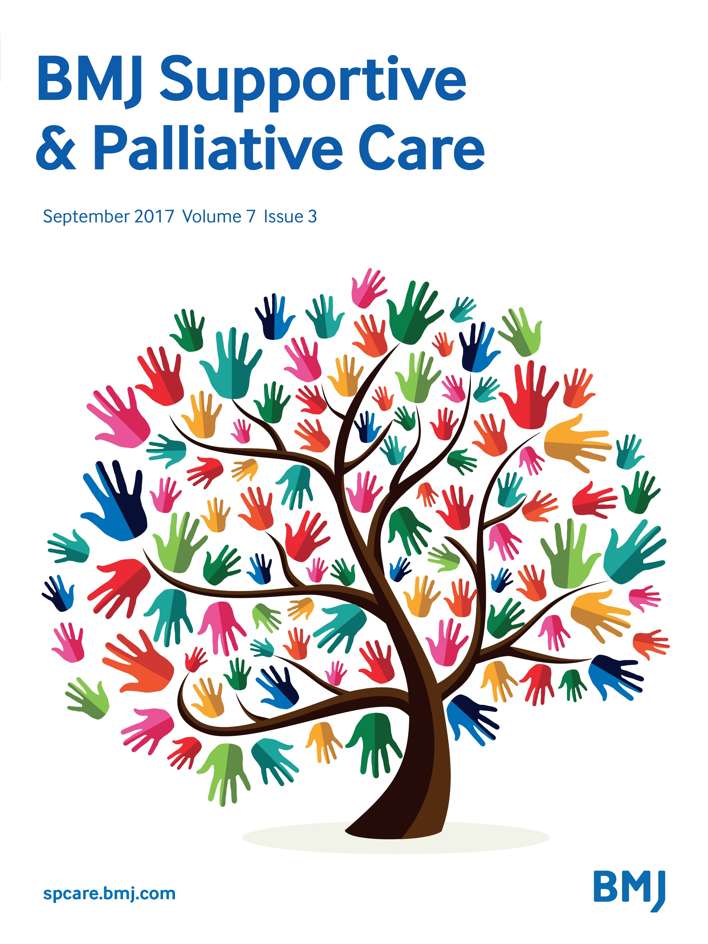 Caring clipart palliative care. International variations in clinical