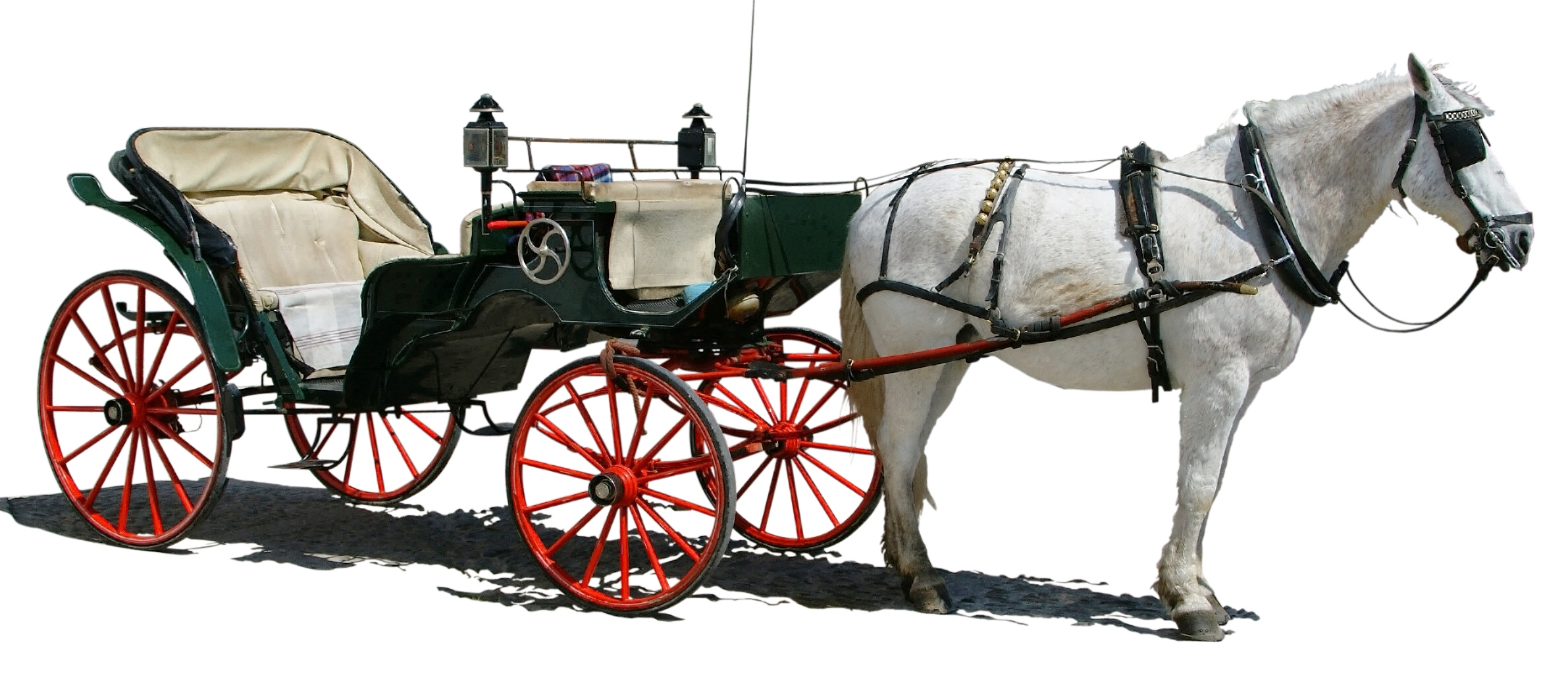 Carriage clipart carriage ride. Horse png hd transparent