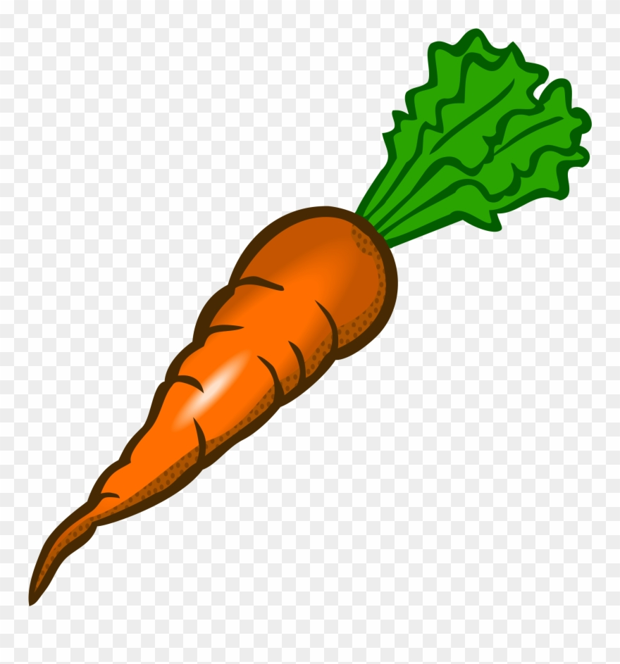 Carrot clipart. Clip art free images