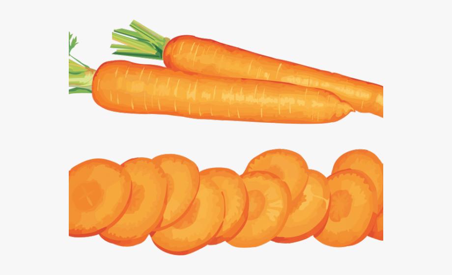 Carrot clipart caroot. Slice vegetables clip art