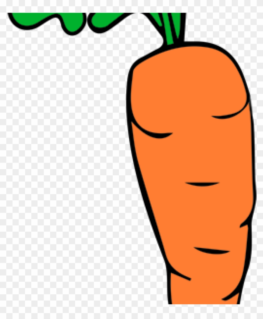 Carrot clipart carrat. Free download rh thelockinmovie