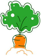 Carrot clipart carrot plant. From microsoft clip art