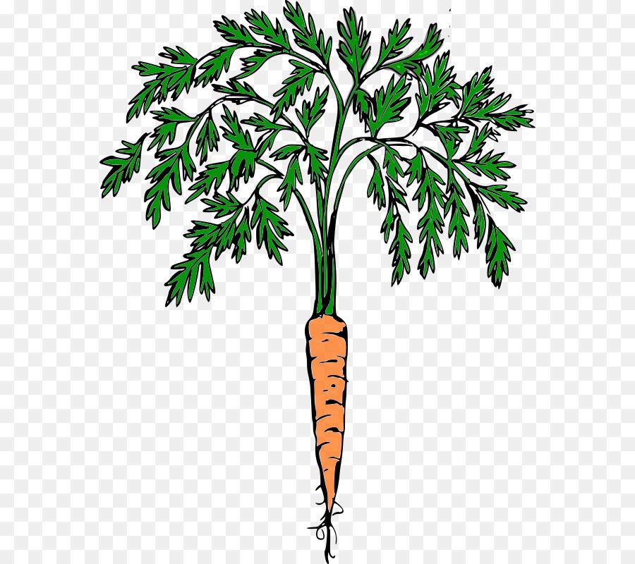 Carrot clipart carrot plant. Cartoon tree transparent