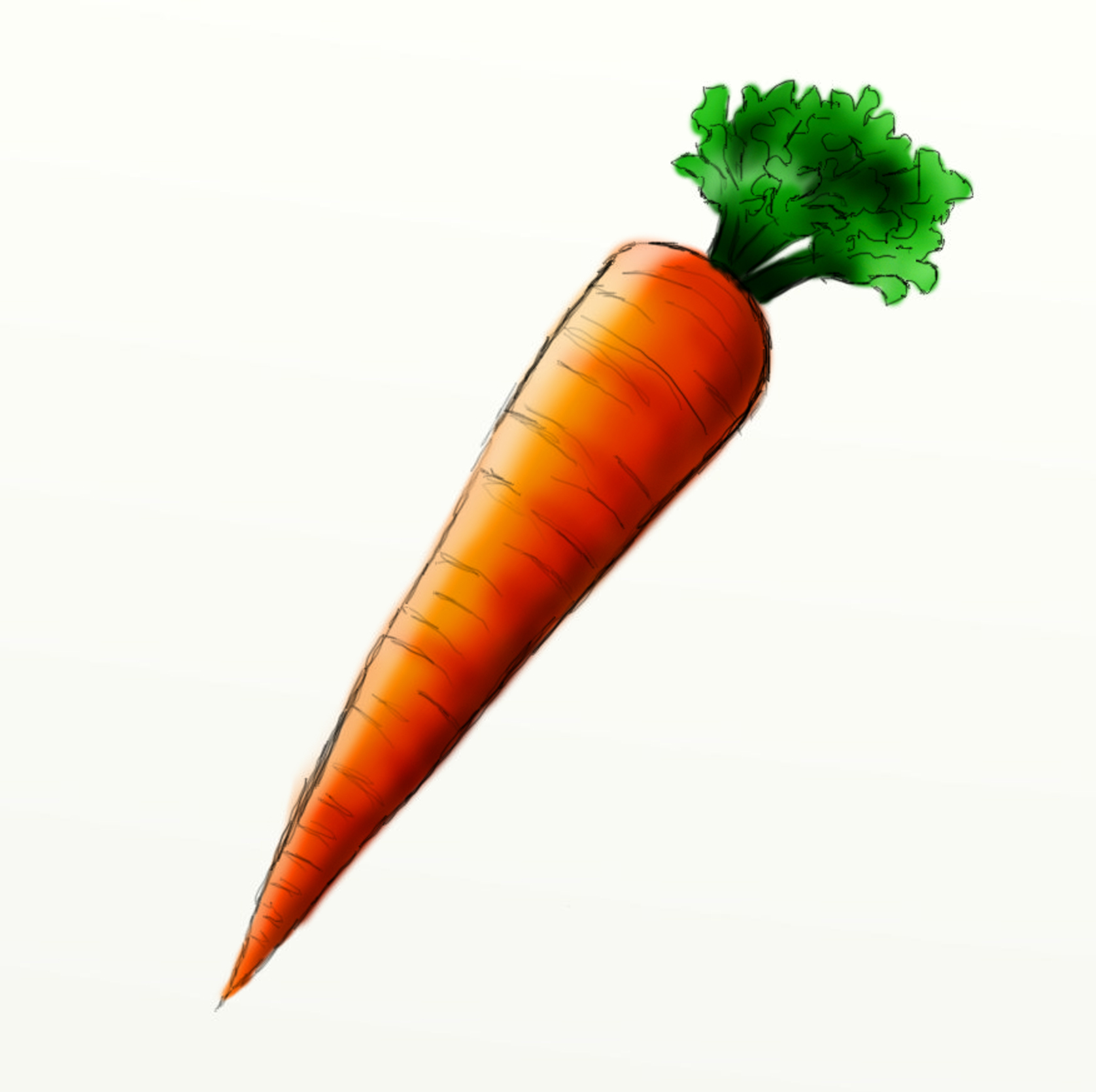 Carrots clip art panda. Carrot clipart christmas