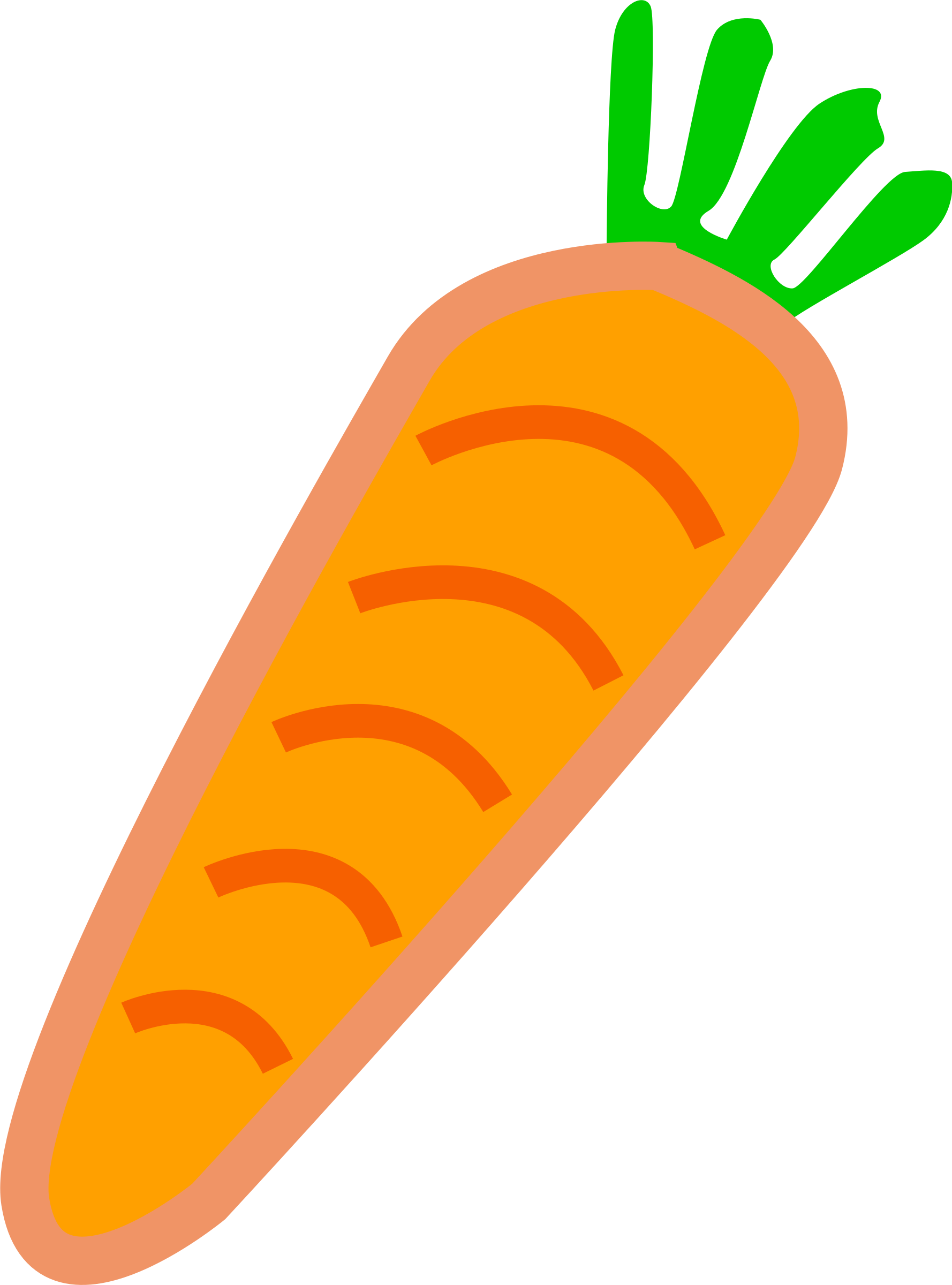 Orange with green leafs. Vegetables clipart carrot