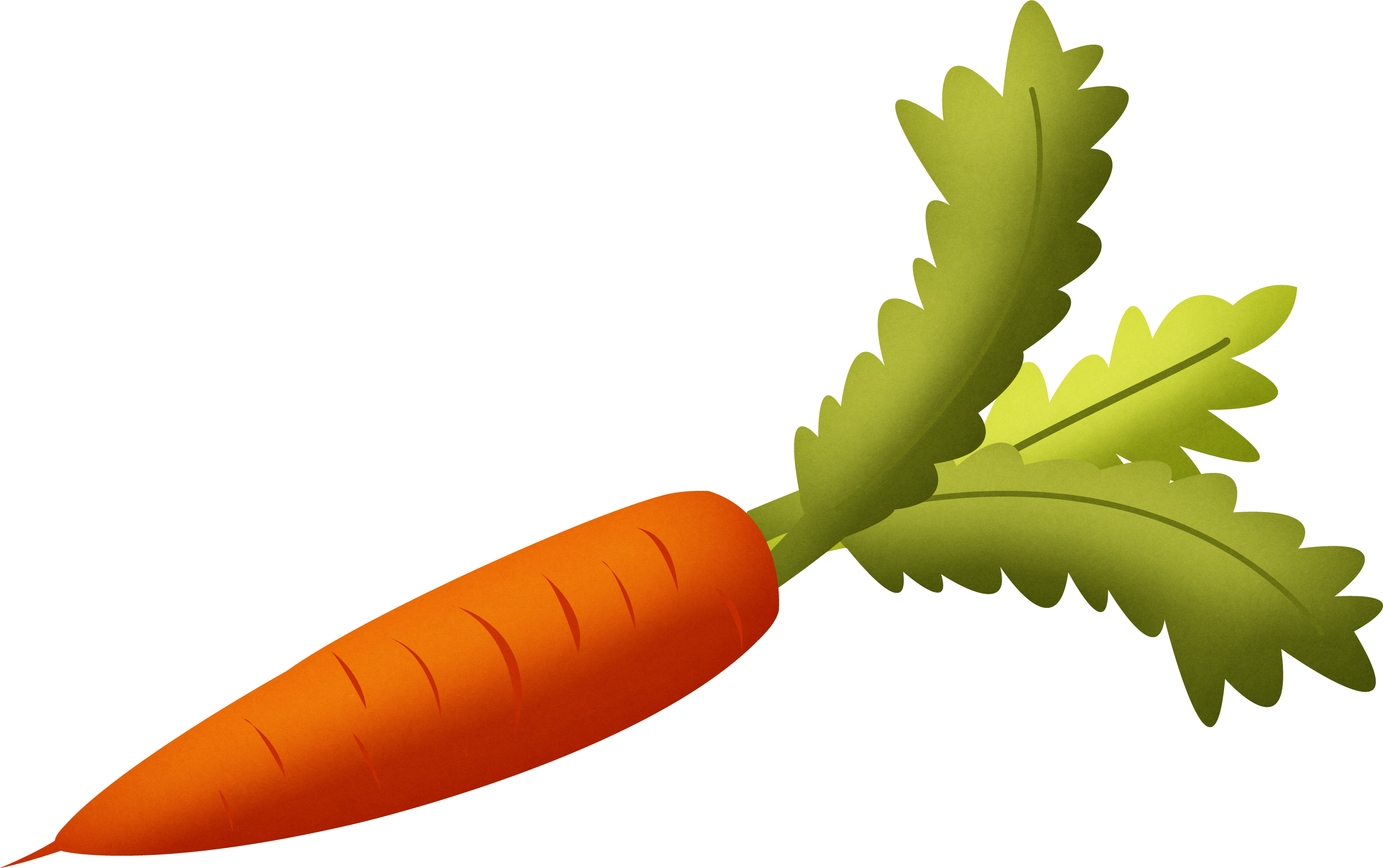 Carrot png image free. Leaves clipart vector