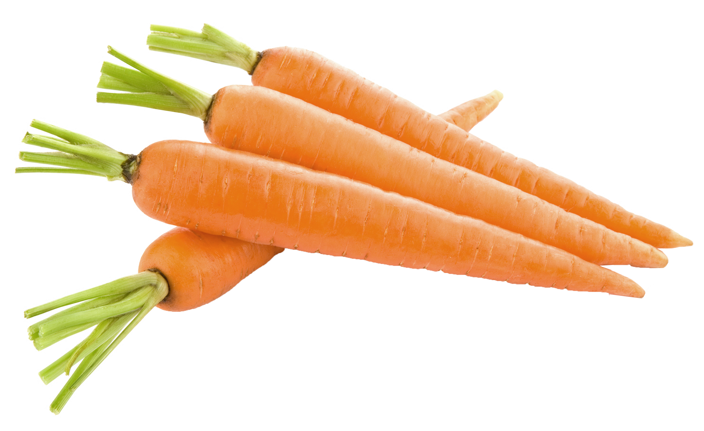 Carrots png picture gallery. Clipart vegetables carrot stick