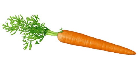 Png images free download. Carrot clipart transparent background