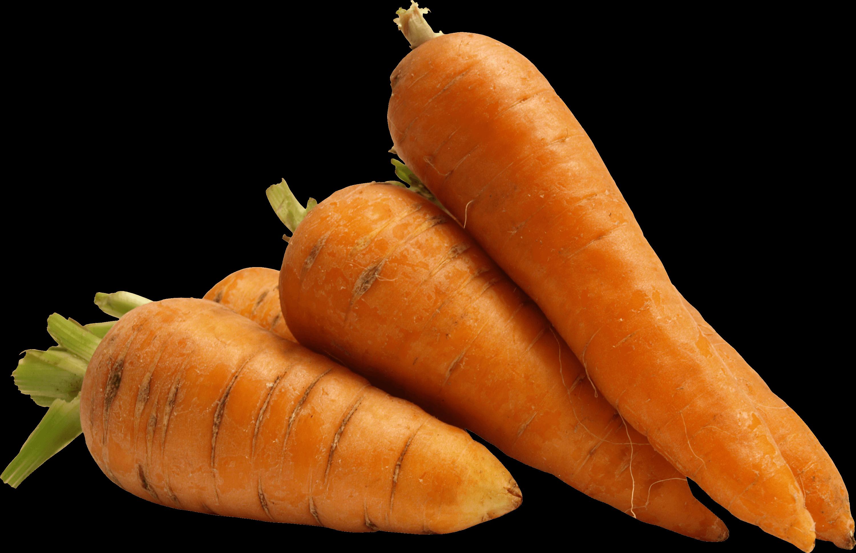 A few carrots transparent. Clipart vegetables carrot