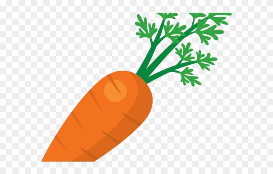 . Carrot clipart transparent background