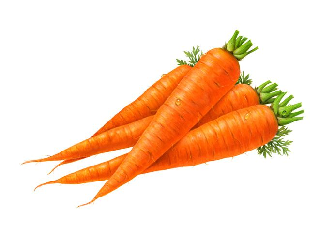 Cartoon food carrots vegetables. Carrot clipart vegetable