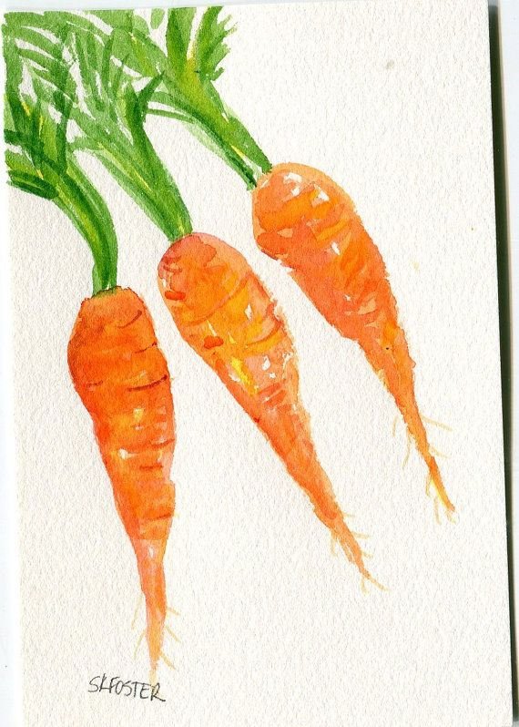 Carrot clipart watercolor.  best carrots images