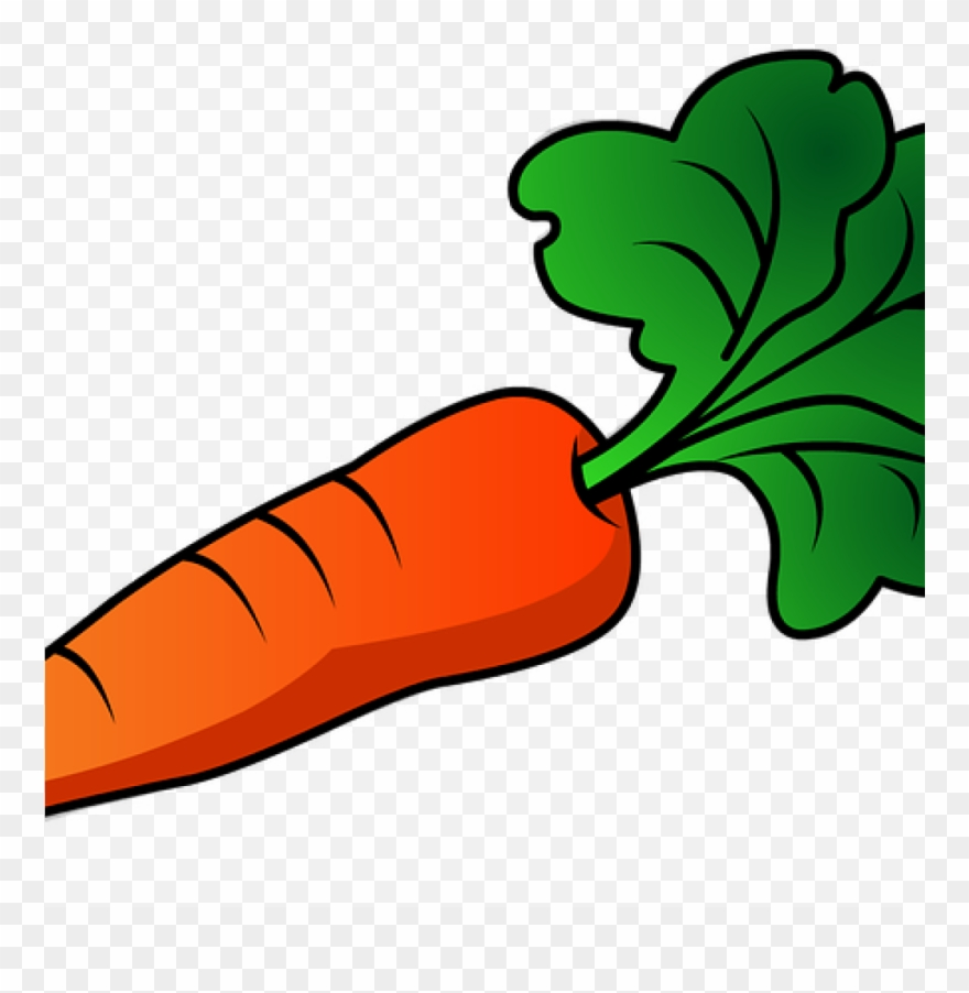 Free jpg transparent huge. Carrot clipart