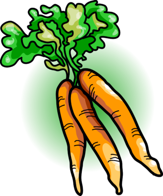 Image carrots food clip. Carrot clipart carrot plant