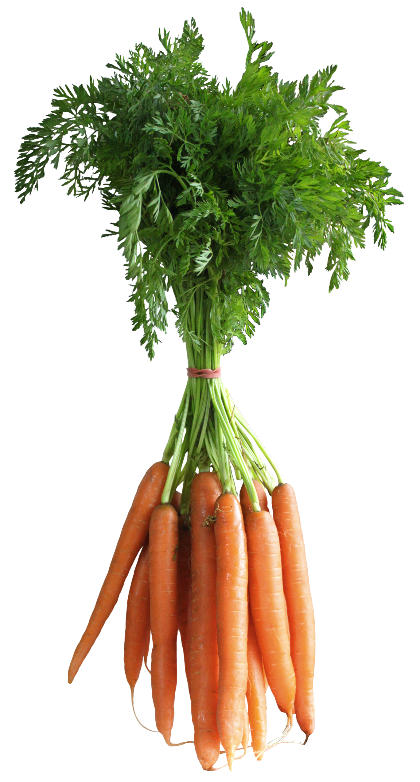 Weight clipart transparent background. Carrots png picture gallery