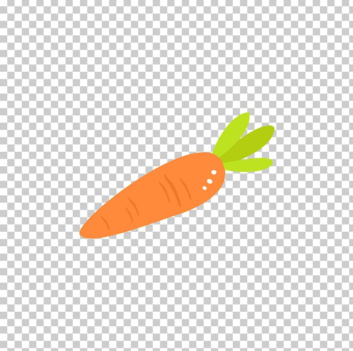 Carrots clipart red carrot. Orange png vector
