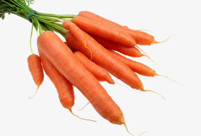 Bunch of radish cheap. Carrots clipart red carrot