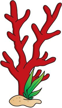 Cartoon clipart coral. Clip art google search