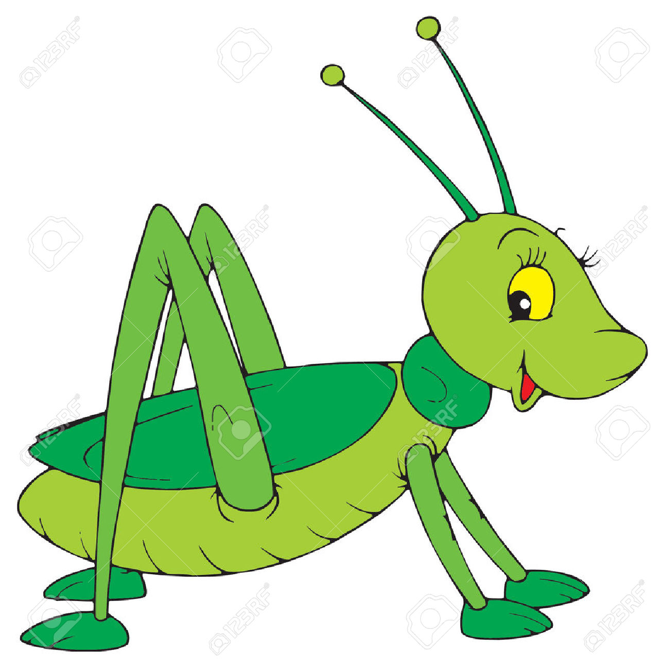 Cartoon cricket insect . 7 clipart bug