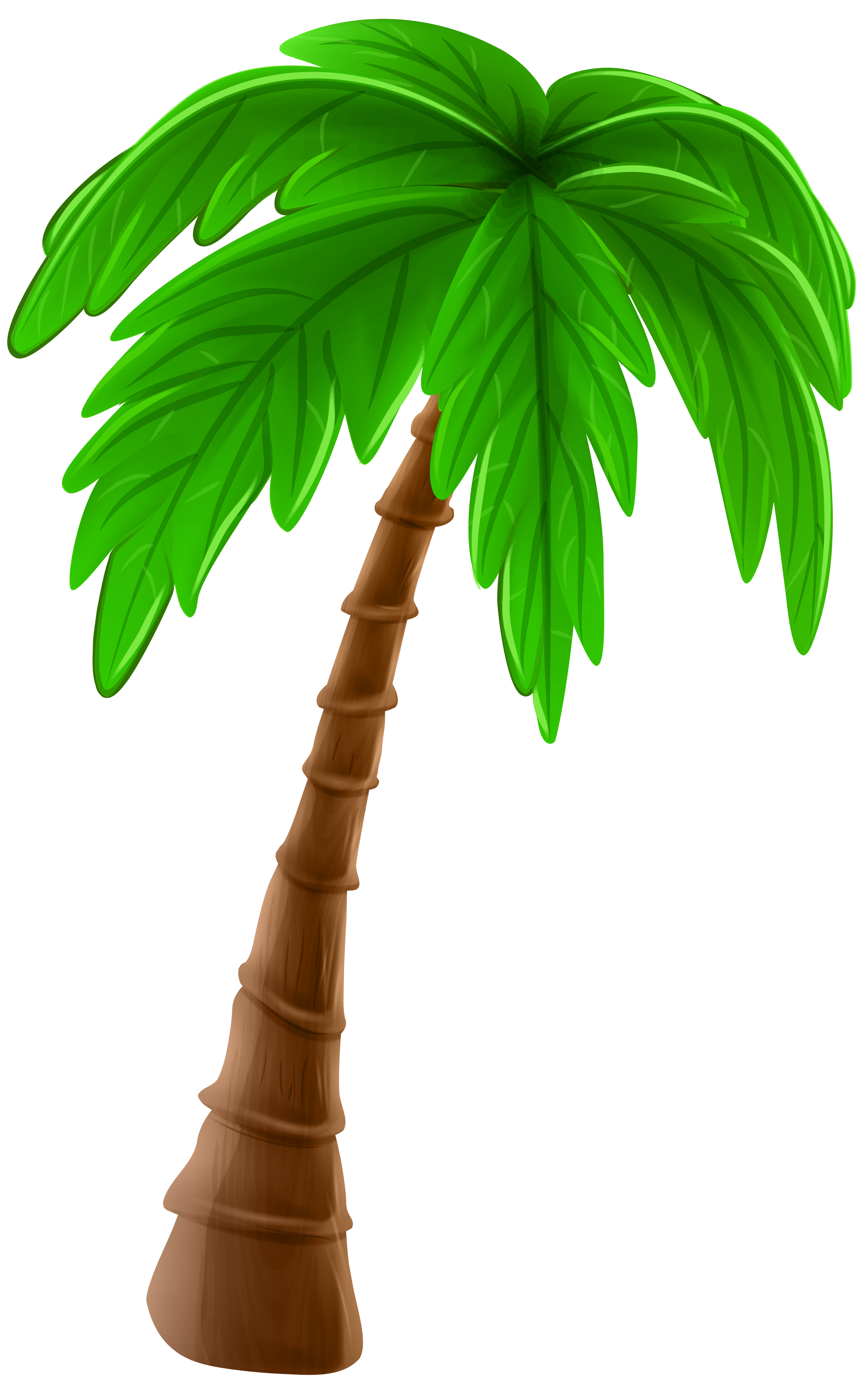 Clipart tree cartoon. Palm png clip art