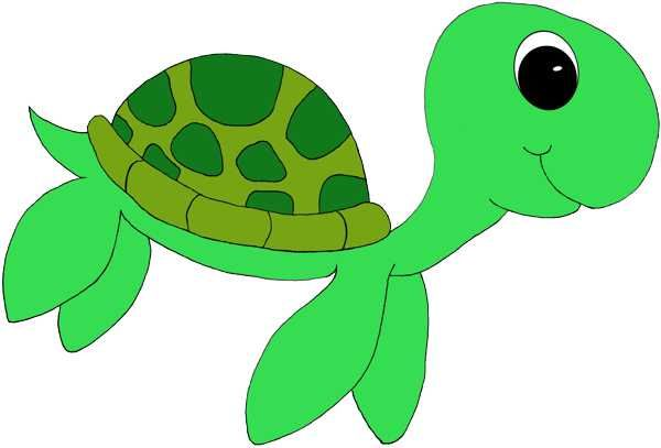 Animals clipart turtle. Cute best classroom theme