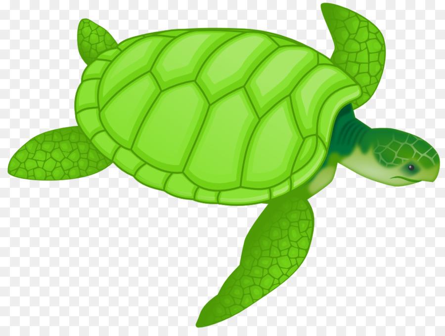 Green sea drawing clip. Clipart turtle loggerhead turtle