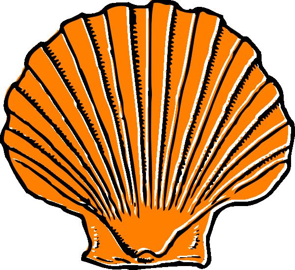 Shell clipart cartoon. Orange seashell clip art