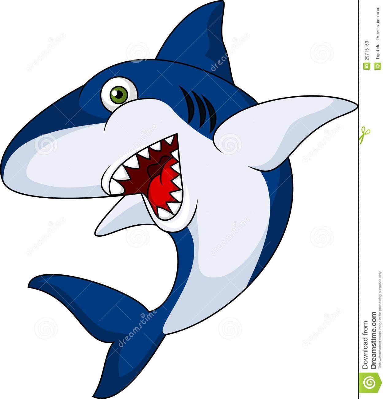 Images sharks . Clipart shark cartoon