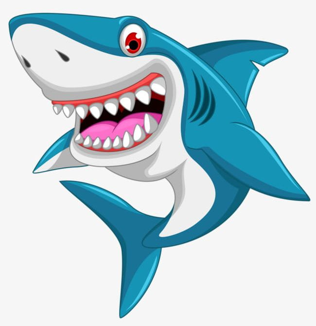 Clipart shark cartoon. Great white png