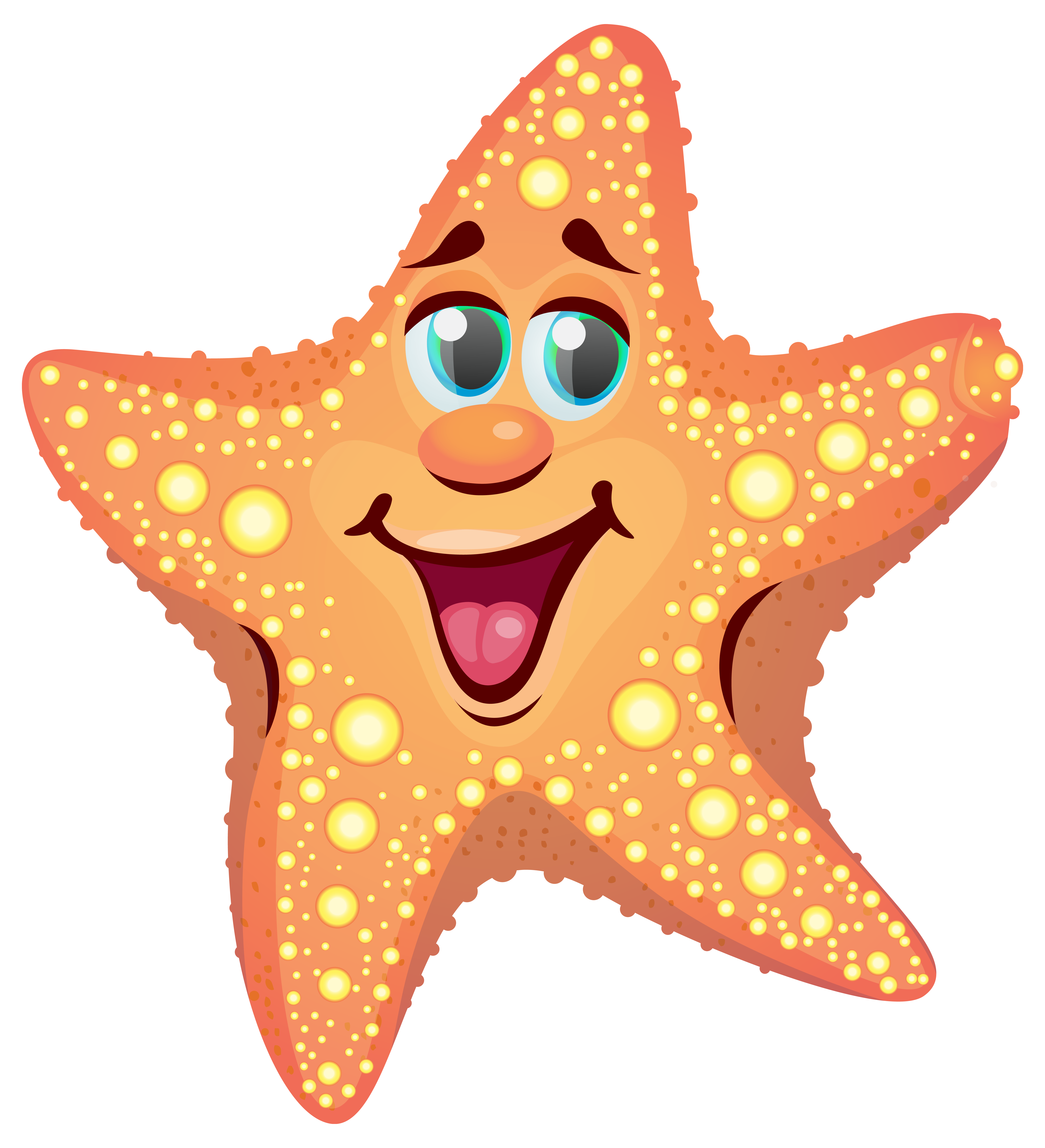 Starfish clipart. Cartoon png image gallery