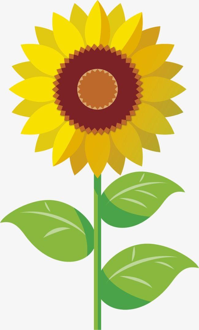 Cartoon clipart sunflower, Cartoon sunflower Transparent ...