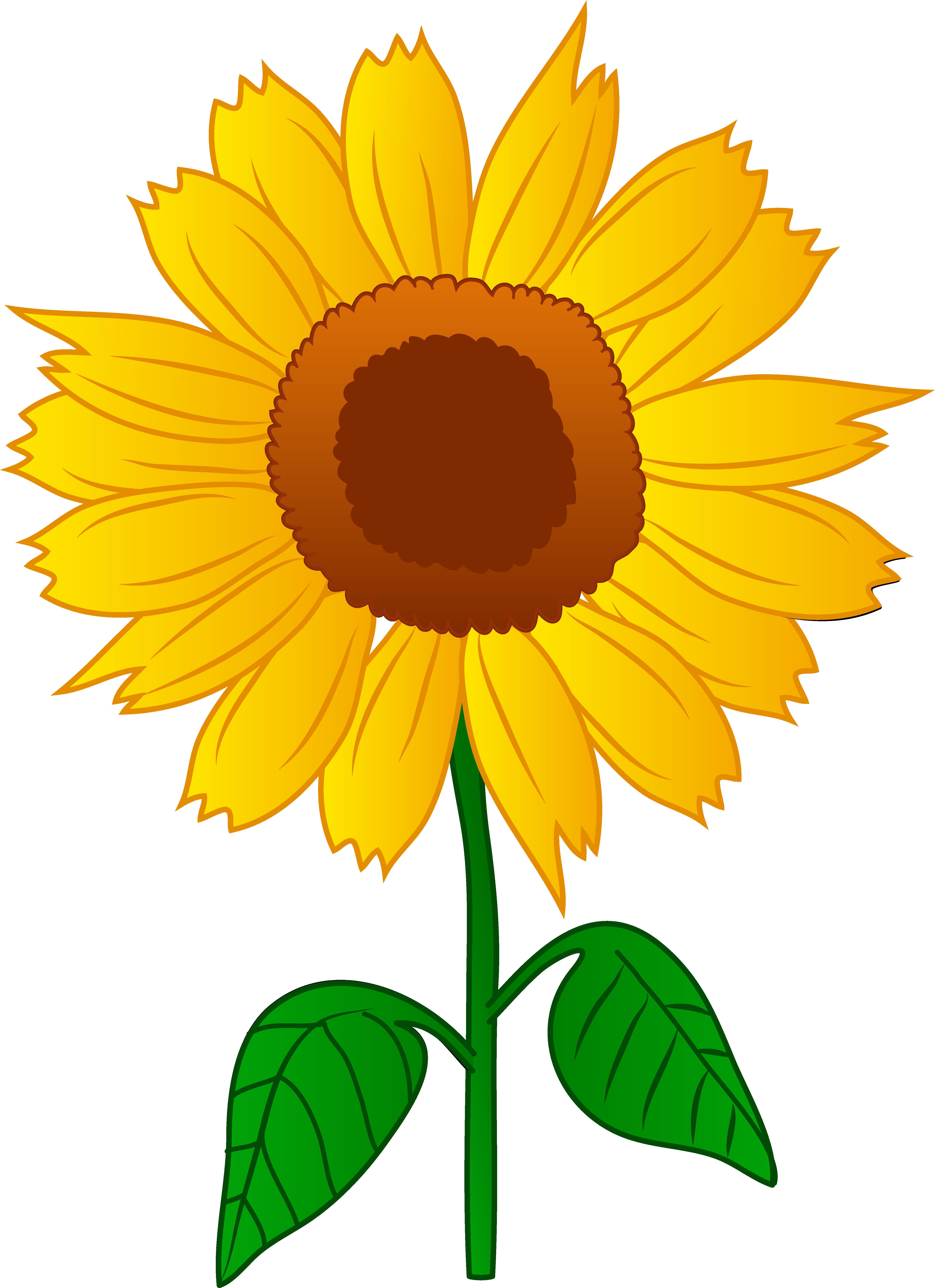 Raffle clipart cartoon. Free sunflower download clip