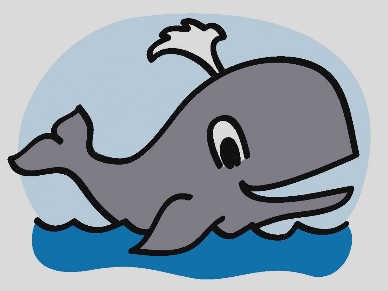 Unique of clip art. Cartoon clipart whale