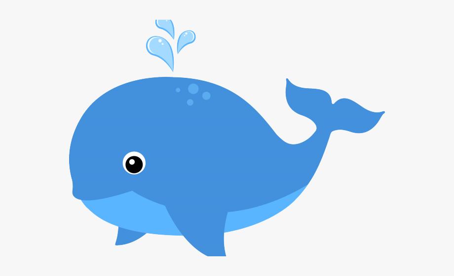 Sea life animals transparent. Clipart whale organism