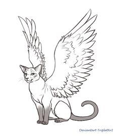 For to color cat. Cats clipart angel